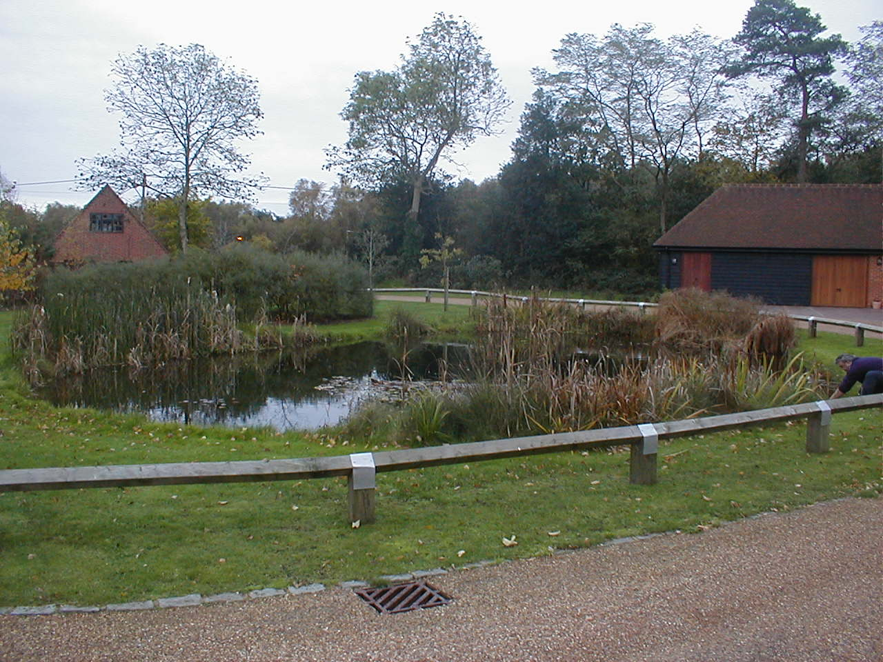 As well as your average garden pond we maintain larger for Large pond maintenance